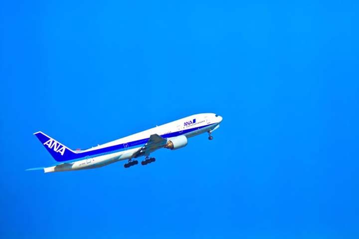 飛行機の豆知識!コードシェア(共同運航)便を賢く利用する方法